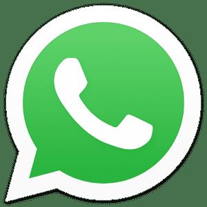 Logo WhatsApp Pedragon Brasilia